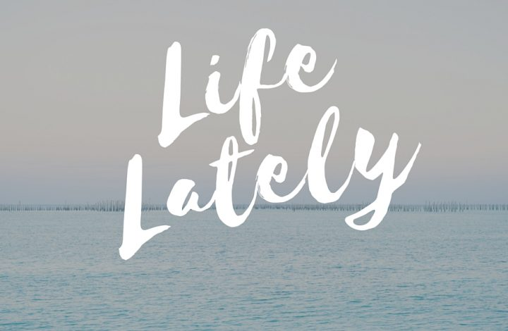 Life Lately: Mom Guilt and Tantrums