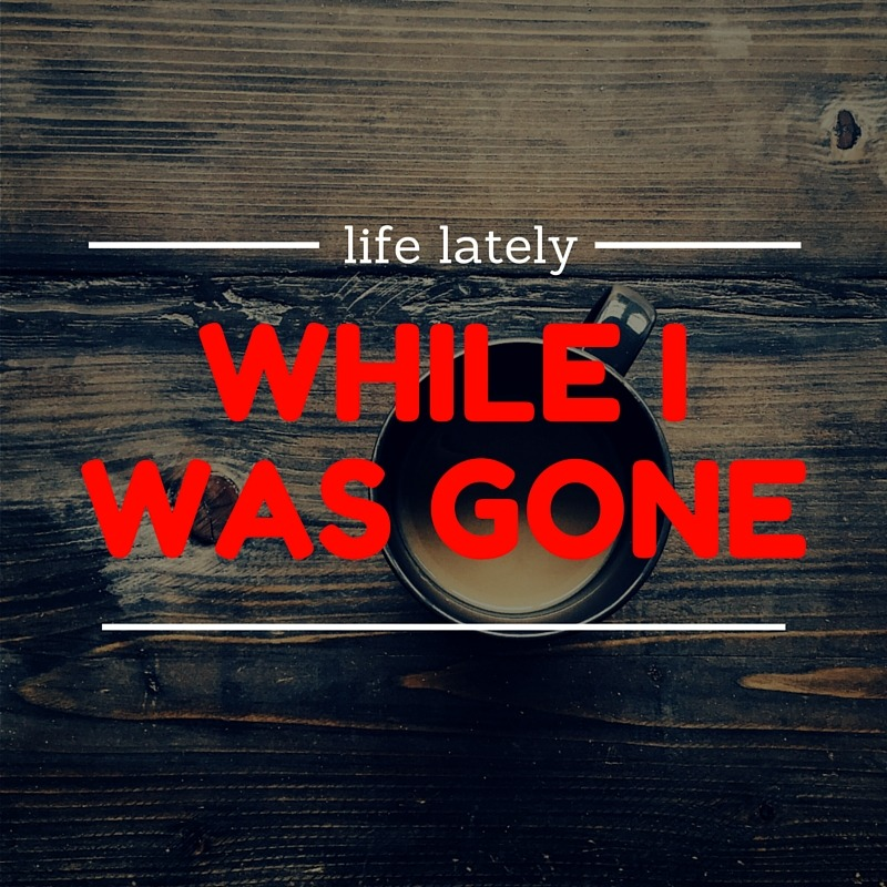 life lately while I was gone - By Megan Kelly
