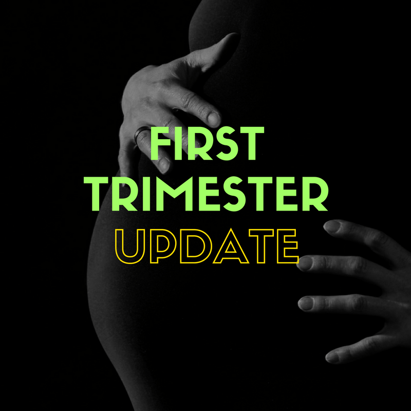 first trimester update - By Megan Kelly